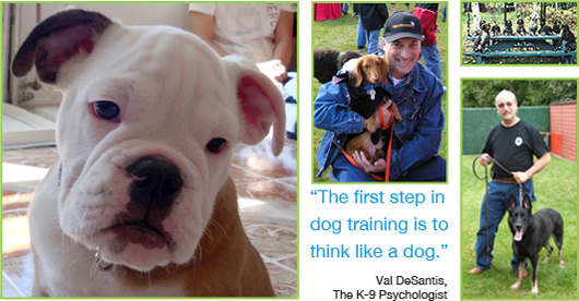 The first step in dog training is to think like a dog. -Val DeSantis, The K-9 Psychologist